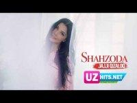 Shahzoda - Jajji qizaloq (Klip HD)